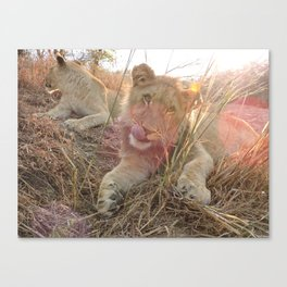 Africa and Alika Canvas Print
