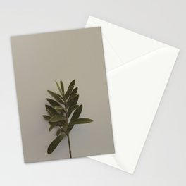Nature Watch No. 1 Stationery Cards