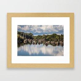 Dead Lakes Florida  Framed Art Print
