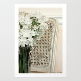 Winter Narcissus & Vintage French Chair Art Print