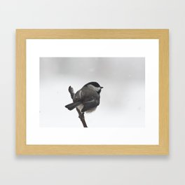 The Bravest Little Chickadee Framed Art Print