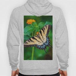 Papillon Hoody