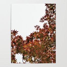 Changing of Seasons Poster