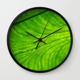 Leaf Paths Wall Clock