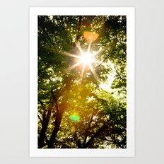The Sun's Rays Art Print