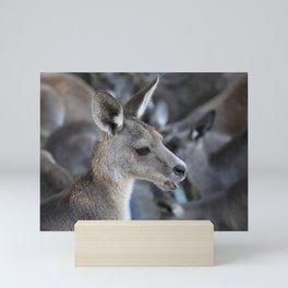 The Kangaroo Mini Art Print