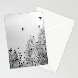 January Birds - part1 Stationery Cards