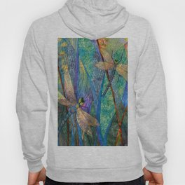 Colorful Dragonflies Hoody