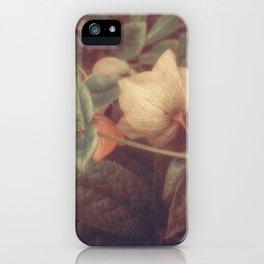 SECRET FLOWERS OF PARADOX iPhone Case