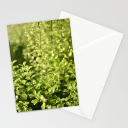 Through The Green Stationery Cards