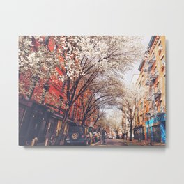 NYC Cherry Blossoms on the Lower East Side Metal Print