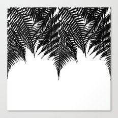 Fern Fringe Canvas Print