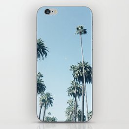 Look Up It's Palms iPhone Skin