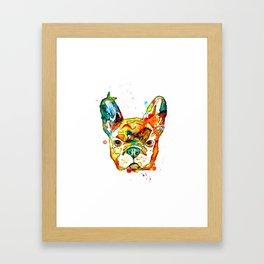 Colorful french bulldog Framed Art Print