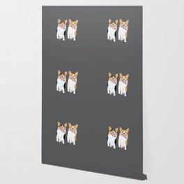 Corgi Friends Running Together Wallpaper