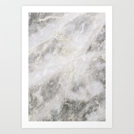 Silver & Gold Marble Art Print