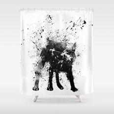 wet dog Shower Curtain