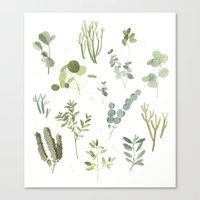 plants Canvas Prints featuring Plants  by Maggie Chiang