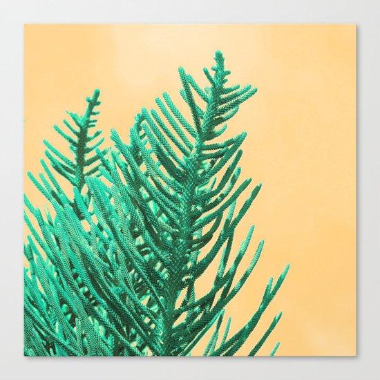 Emerald Pine Canvas Print