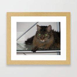 Precious Zoe-kins Framed Art Print