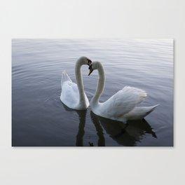 Romatic Swan Couple Canvas Print