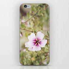 Solo Bloom iPhone & iPod Skin