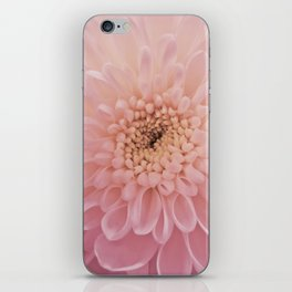 Perfect Petals iPhone Skin