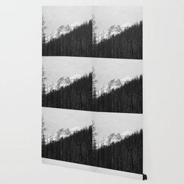Trees Die Wallpaper