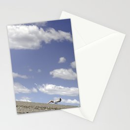 On a Summer's Day - Marblehead, MA 2013 Stationery Cards