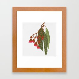 Flowering Gum - White Framed Art Print