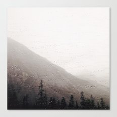 Drop-lets Canvas Print