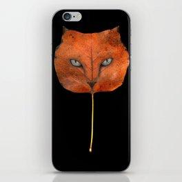 Autumn Cat-4 iPhone Skin
