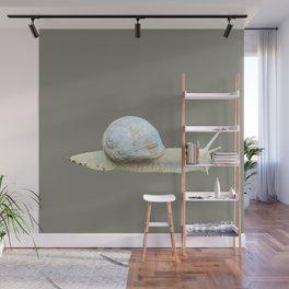 Snail on graybrown Wall Mural