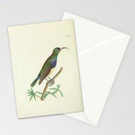 Leona Creeper6 Stationery Cards
