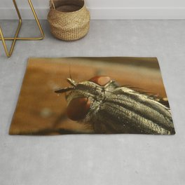 Fly Zone Rug