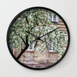 Spring Tree Blossoming In Krakow Wall Clock