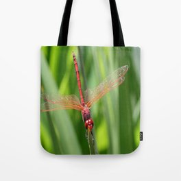 Closeup of Red Skimmer or Firecracker Dragonfly Tote Bag