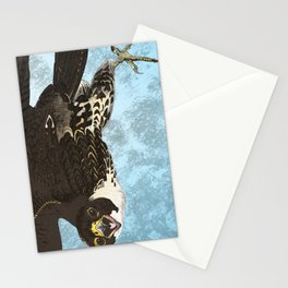 The hawk hangs perfect in mid air.. Stationery Cards