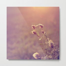 the softer you^^ Metal Print