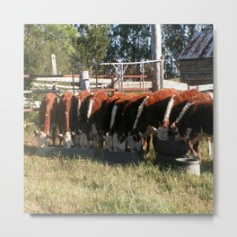 All Lined Up. Metal Print