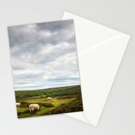 Sheep grazing in North Yorkshire Stationery Cards