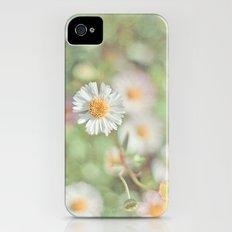 Sunbathing Daisies iPhone (4, 4s) Slim Case