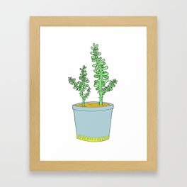 Sedum Framed Art Print