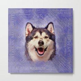 Alaskan Malamute Portrait on word cloud Metal Print