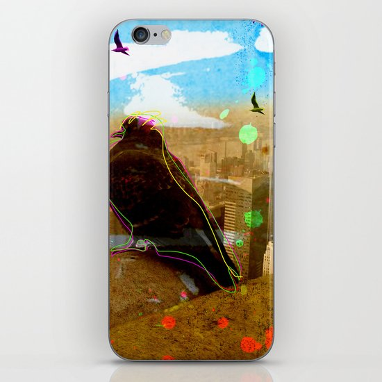 New York Pigeons iPhone & iPod Skin