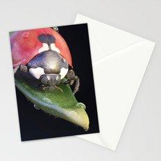 Ladybug Journey Stationery Cards