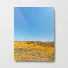 Spring in California Metal Print