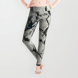 Parched land of Camargue Leggings