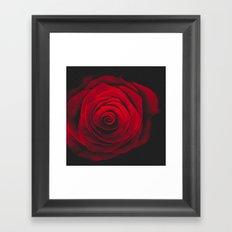 Red rose on black background vintage effect Framed Art Print