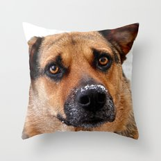 My Nose is Cold Throw Pillow